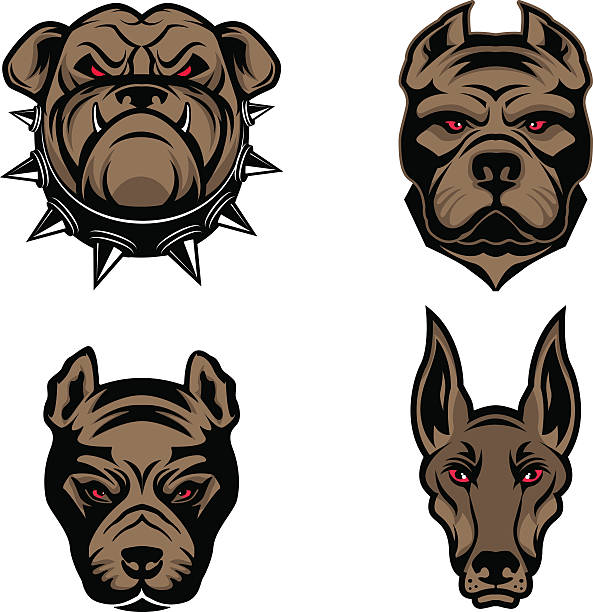Best Angry Dog Illustrations, Royalty.