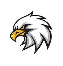 Image result for angry eagle.