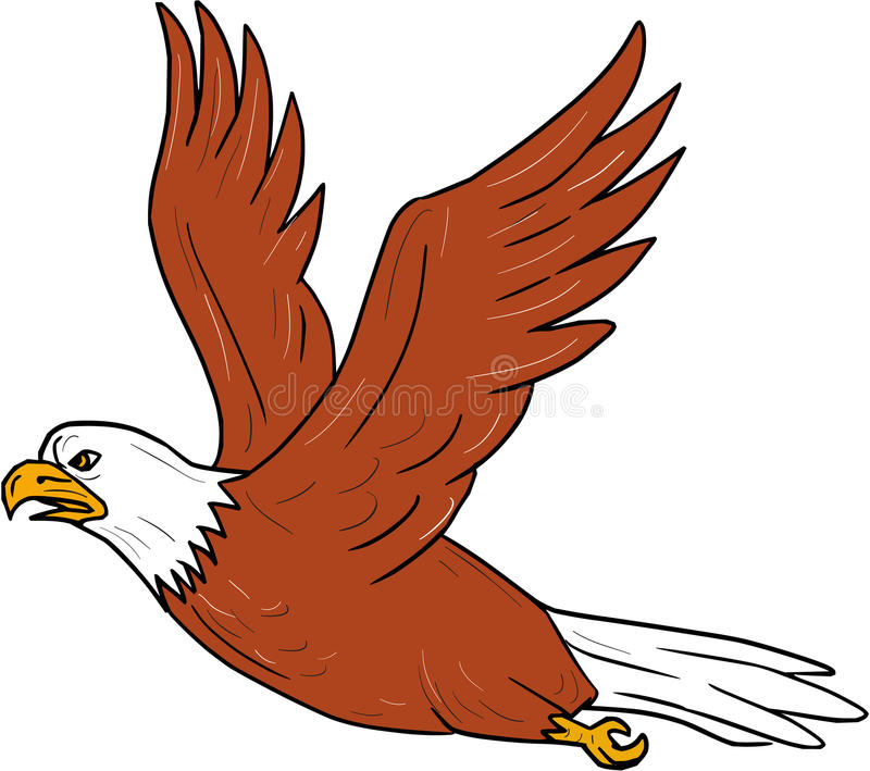 Angry Eagle Stock Illustrations.