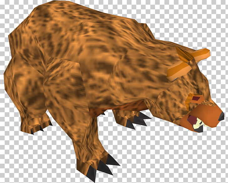 Bear RuneScape Anger Wiki, angry PNG clipart.