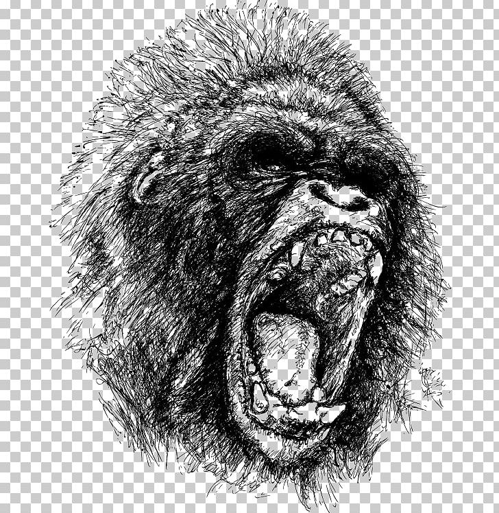 Gorilla Ape King Kong Drawing Anger PNG, Clipart, Angry, Angry.