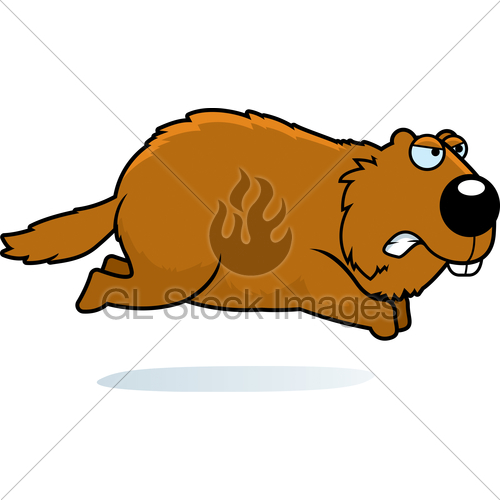 Angry Cartoon Woodchuck · GL Stock Images.