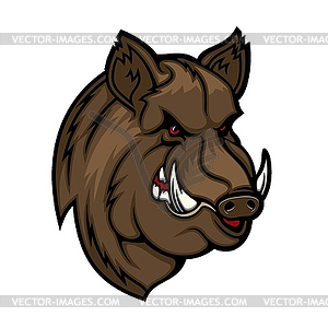 Angry boar head mascot. Wild pig or hog icon.