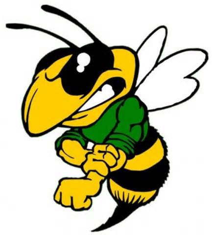 Png Angry Hornet Clipart Png.