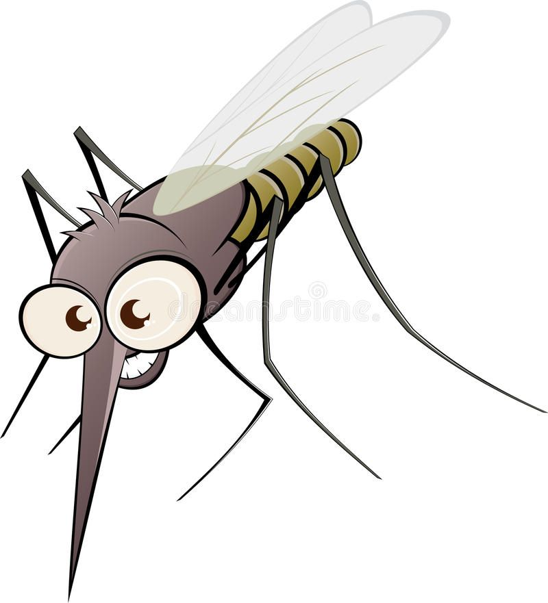 Angry cartoon mosquito. Illustration of angry cartoon.