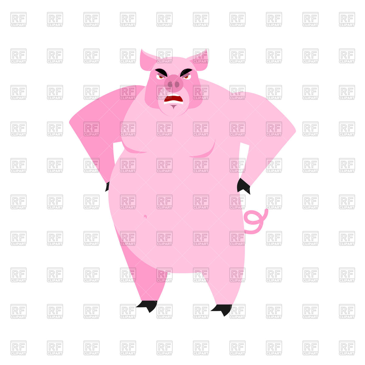 Angry pig Stock Vector Image.