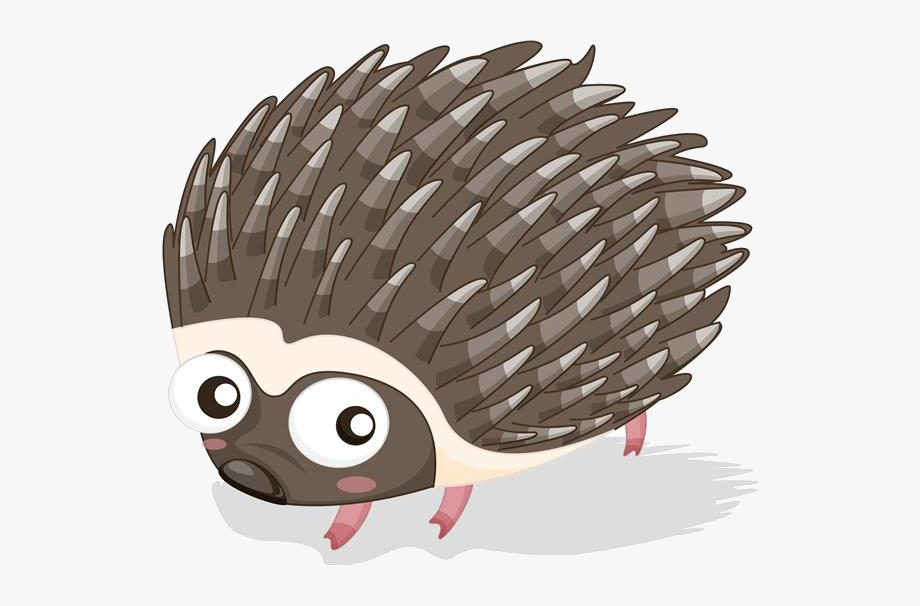 Cartoon Porcupine Png , Transparent Cartoon, Free Cliparts.
