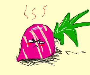 Angry Radish.