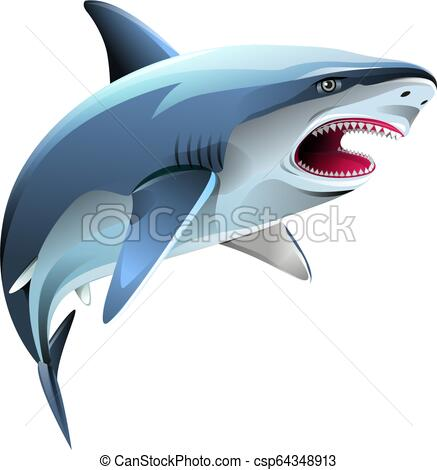 Vector illustration, Angry shark symbol.