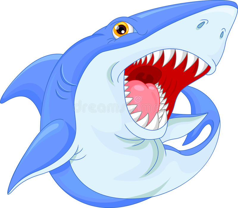 Angry Shark Cartoon Stock Illustrations.