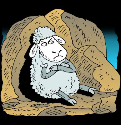 Image: Angry Sheep.