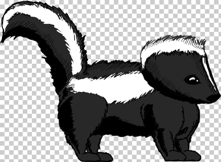 Striped skunk Whiskers Badger, skunk PNG clipart.