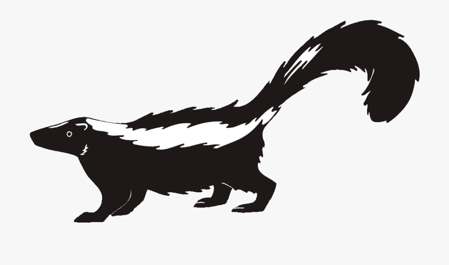 Skunk Clipart Transparent.