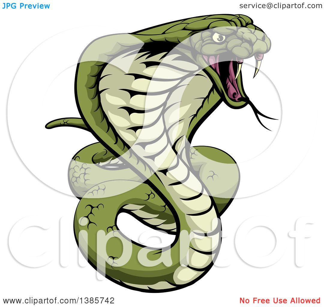 Angry Snake Drawing at GetDrawings.com.