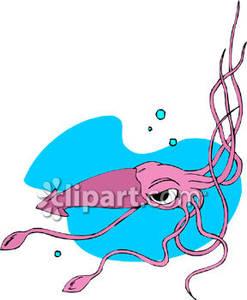 Angry Cartoon Squid.