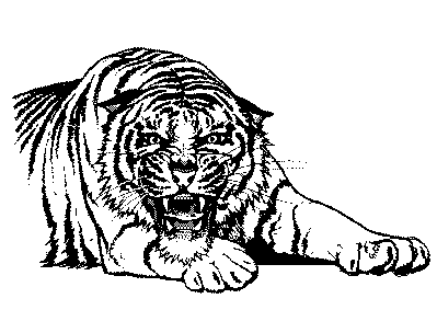 Free Hunting Tiger Clipart, 1 page of Public Domain Clip Art.