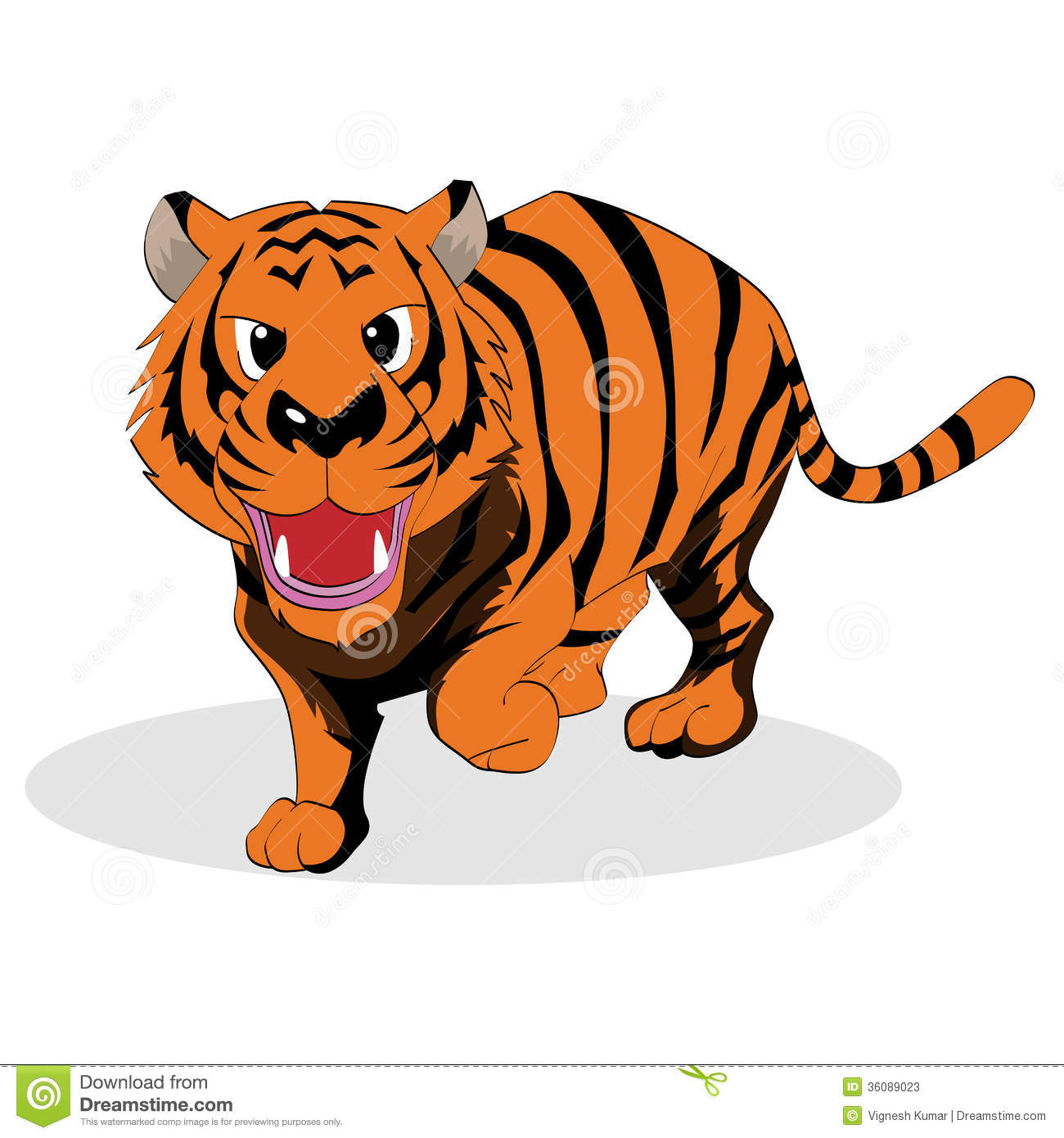Tiger Stock Photos.
