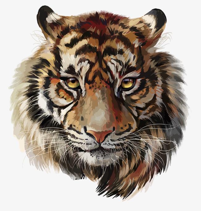 Tiger Png & Free Tiger.png Transparent Images #245.