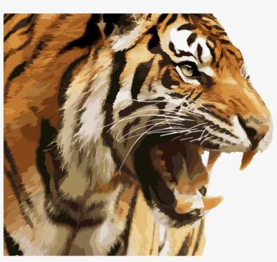 Tiger PNG.