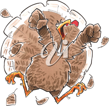 Angry turkey.