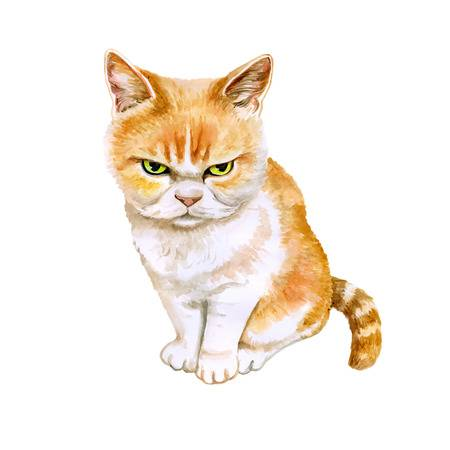 Angry cat clipart 1 » Clipart Station.