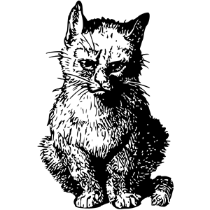 Angry cat clipart, cliparts of Angry cat free download (wmf.
