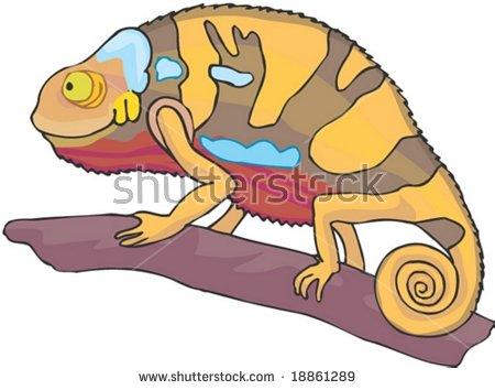 Desert Lizard Stock Photos, Royalty.