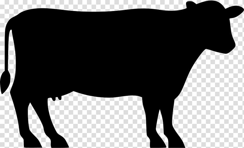 Silhouette cow illustration, Angus cattle Beef cattle Silhouette.