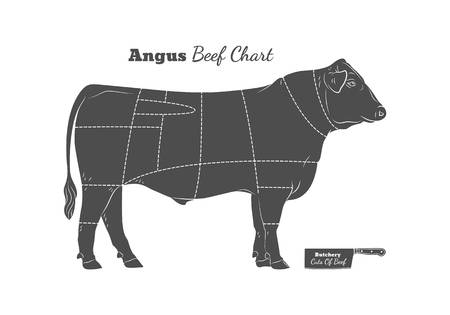 148 Angus Cattle Stock Illustrations, Cliparts And Royalty Free.