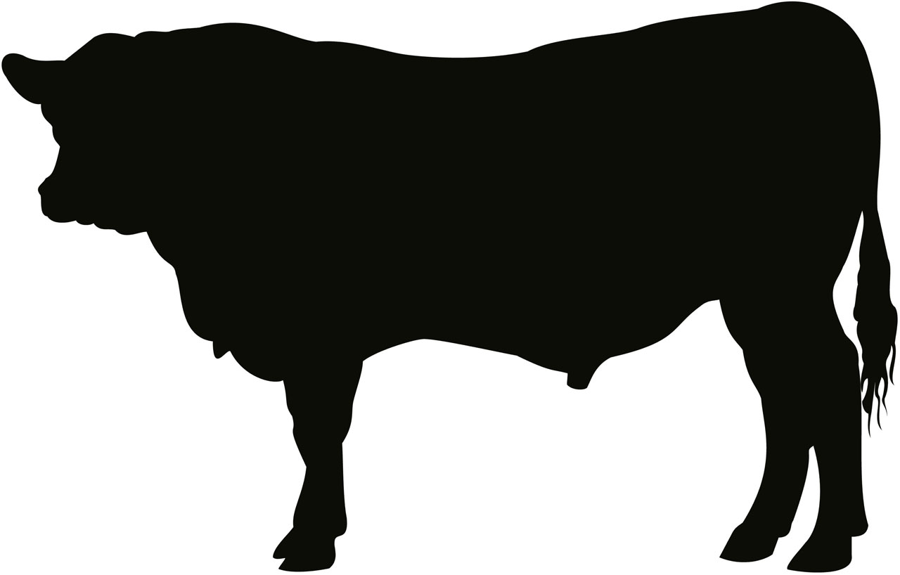 Black Angus Cow Silhouette.