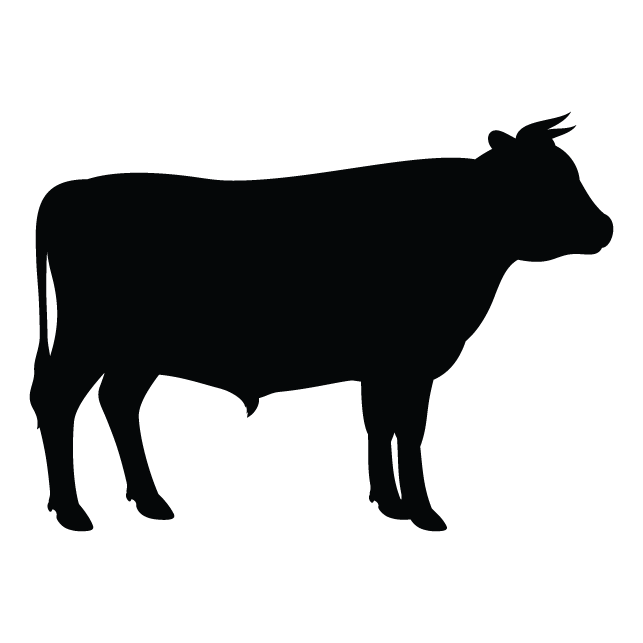 Clip art Vector graphics Angus cattle Silhouette Holstein.