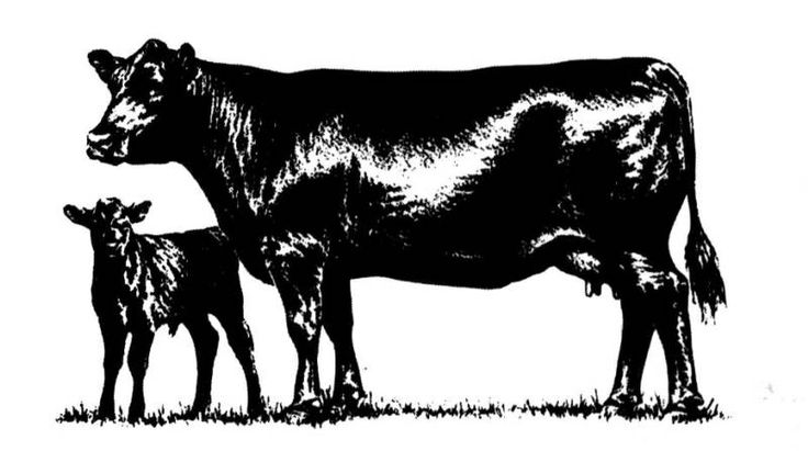 Free Cow Calf Silhouette, Download Free Clip Art, Free Clip.