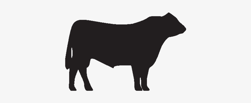 Cow Clipart Hereford Cow.