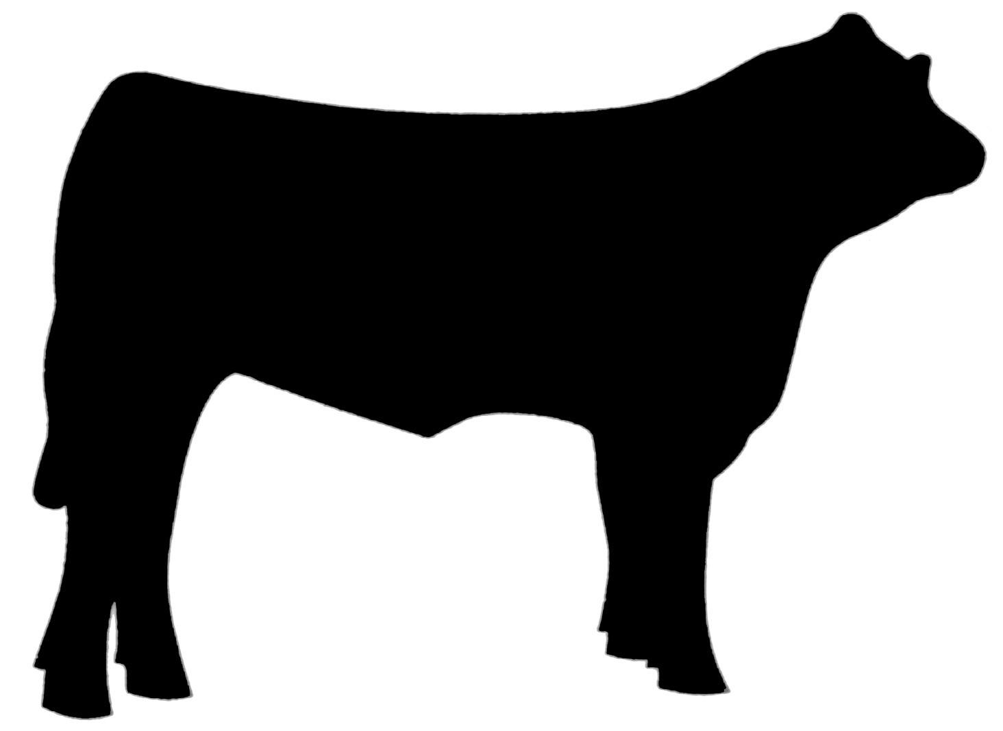 Angus bull head clipart.
