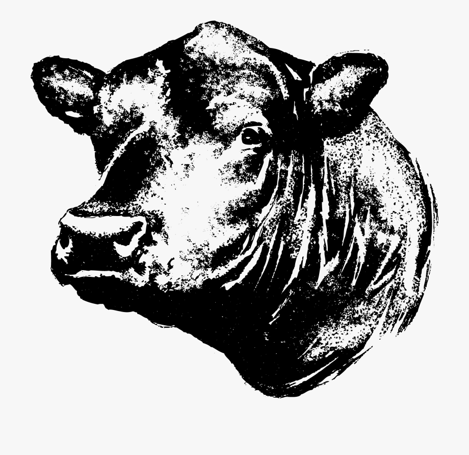 28 Collection Of Black Angus Cow Clipart.