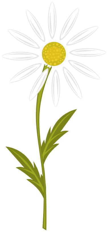 Flowers Clip Art Download.