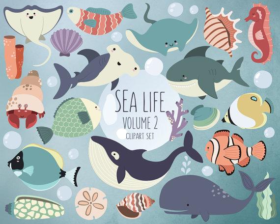 Sea Life Clipart Volume 2 Ocean Clip Art Set by.