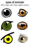 Similiar Horse Eyes Clip Art Keywords.