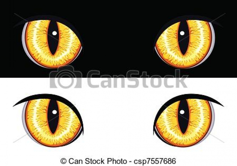 lion eyes clipart lion eyes clipart animal eye illustrations and.