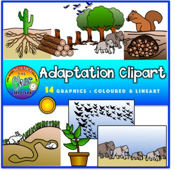 Adaptations Clipart.