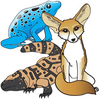 Animal Adaptations Clip Art Set.