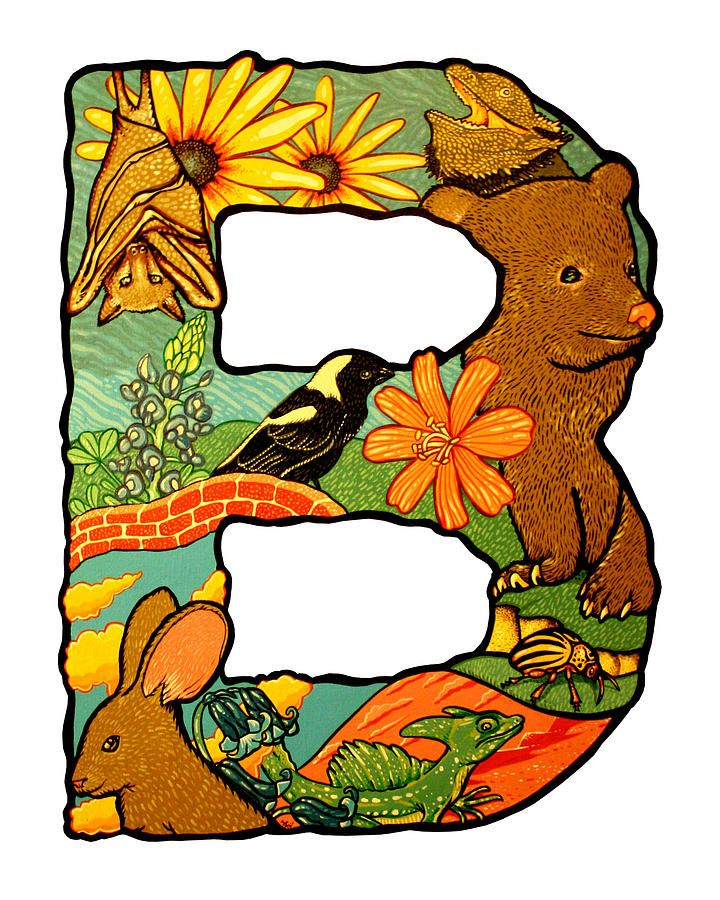 B clipart animal alphabet letter, B animal alphabet letter.