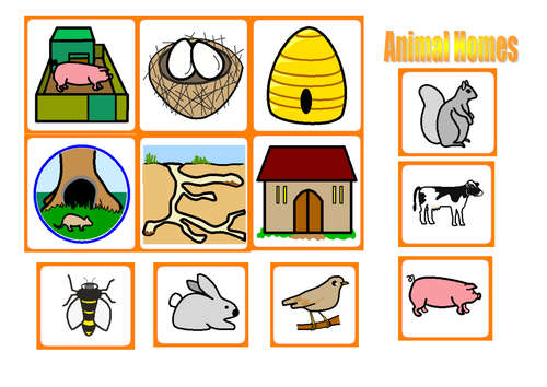 Homes Of Animals Clipart.