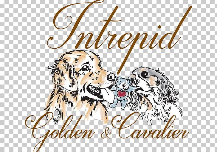 Dog Breed Puppy Golden Retriever Cavalier King Charles.