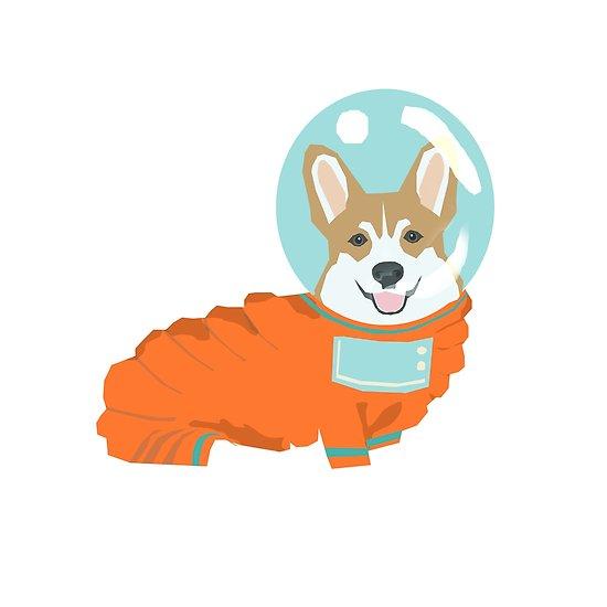animal astronaut.jpg.