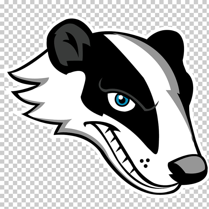 Badger, white and black animal head PNG clipart.