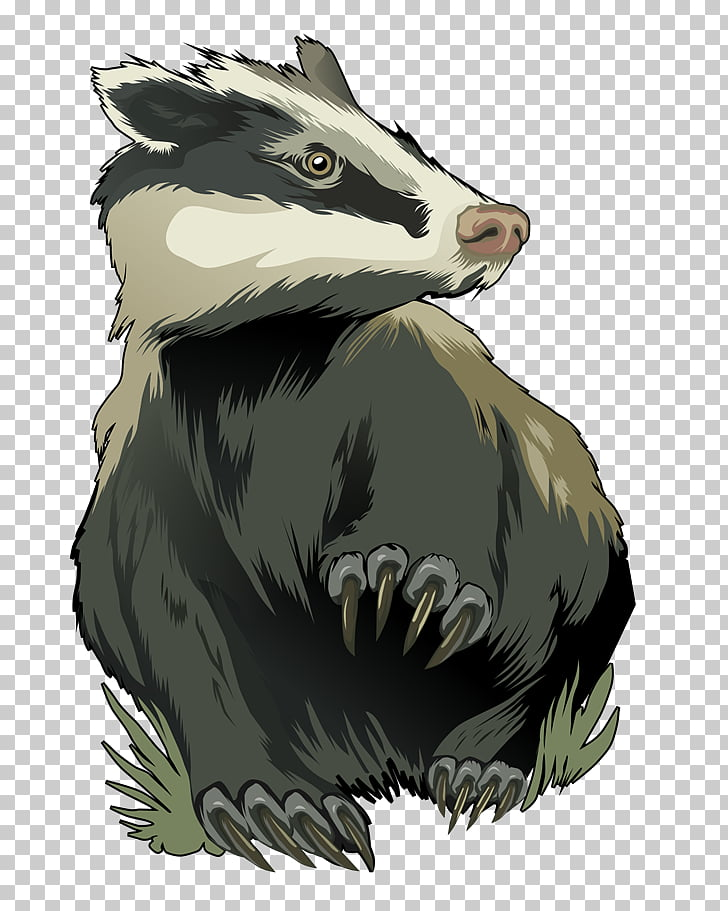 Badger, gray and white animal illustration PNG clipart.