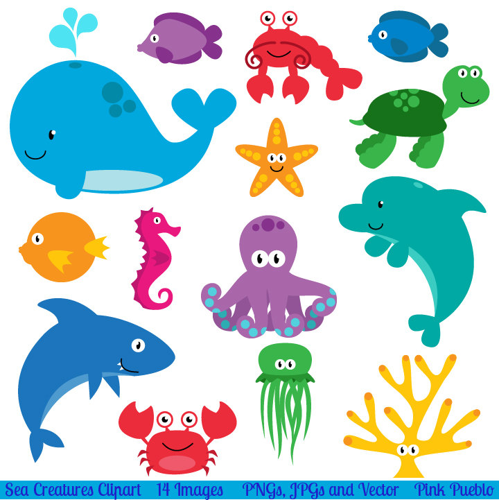 Beach animals clipart.