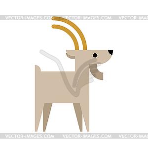 Mountain goat . Animal beast.