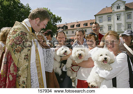 Stock Photo of animal blessing 157934.